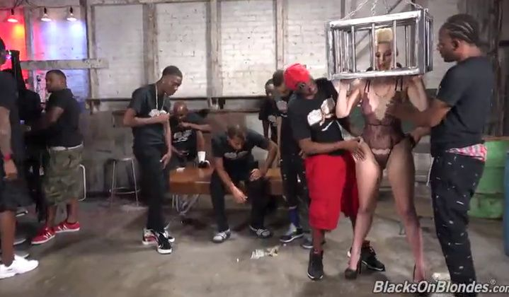 Gangbang - Cougar Versus Many Group Sex Dp Bbcs Gape Dgs